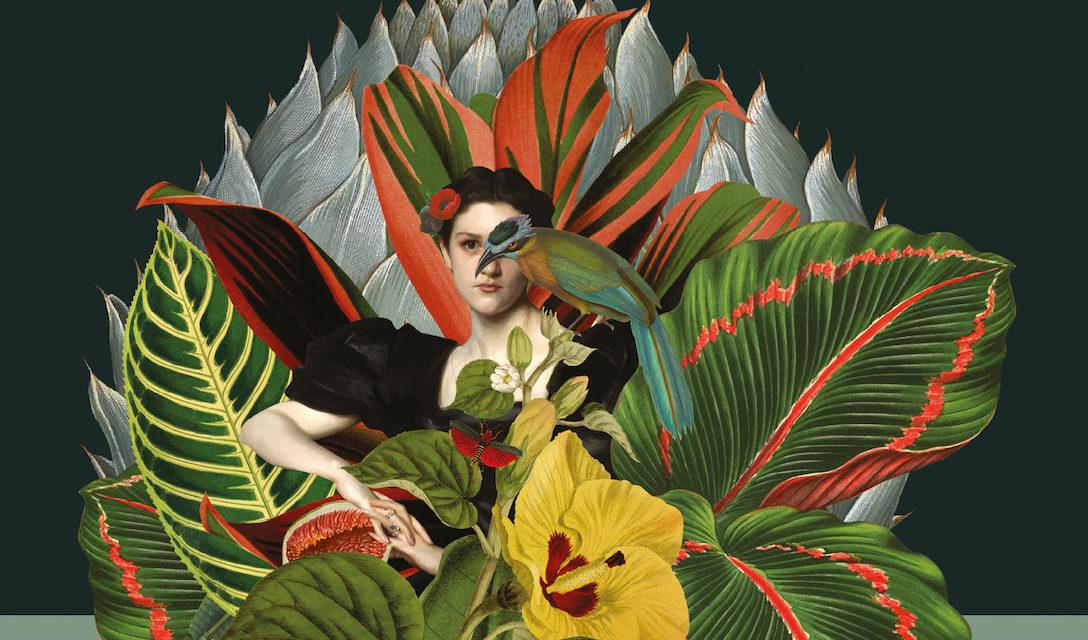 Papeles de Pandora - Rosario Ferre - La Navaja Suiza Editores